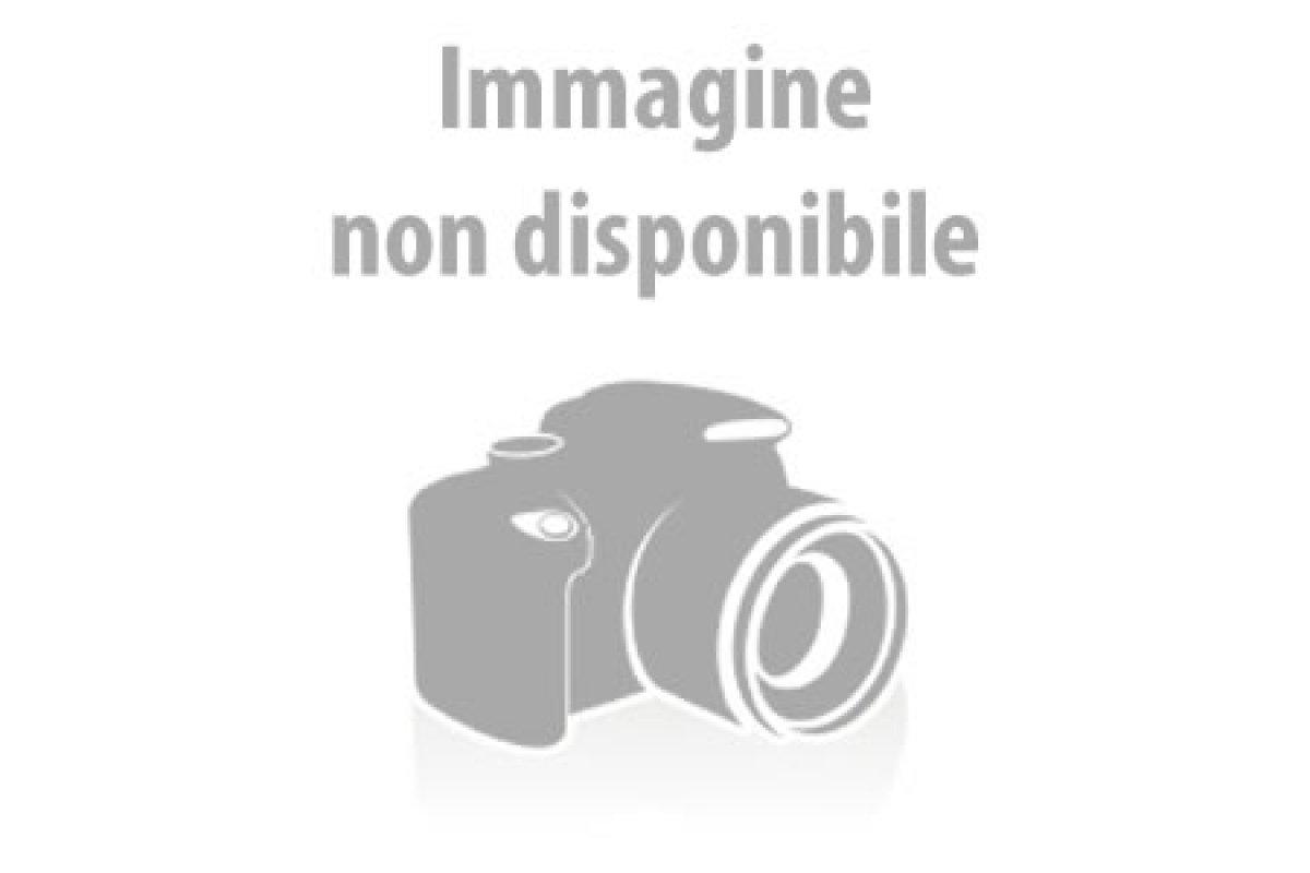 Serie 0150 Sesia