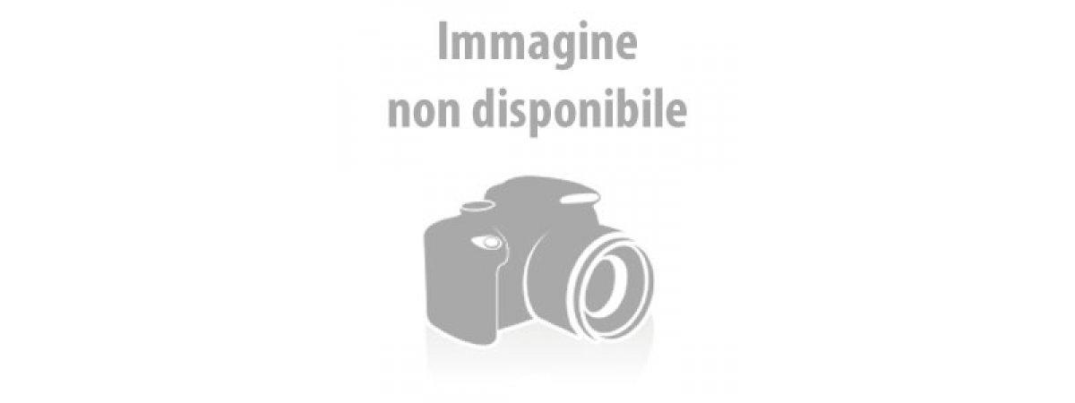 Astucci in Cartoncino